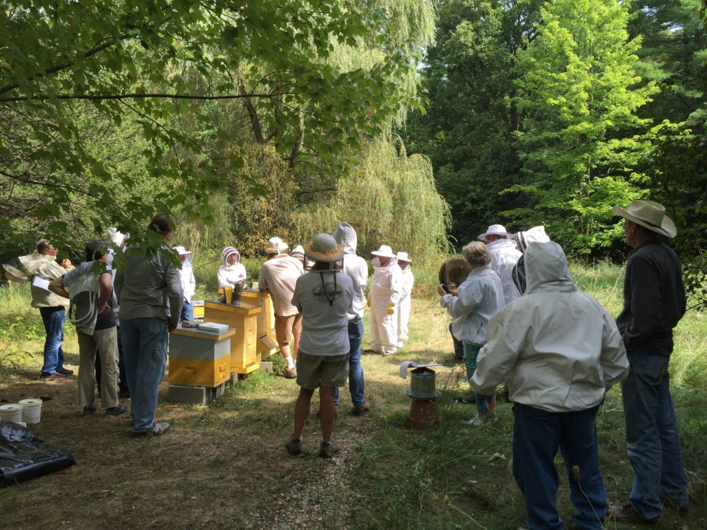 ACBA September Apiary Photo