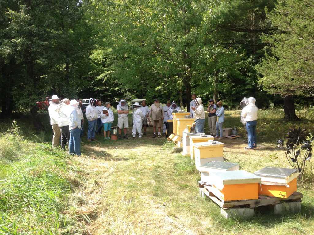 Shot of the ACBA and apiary
