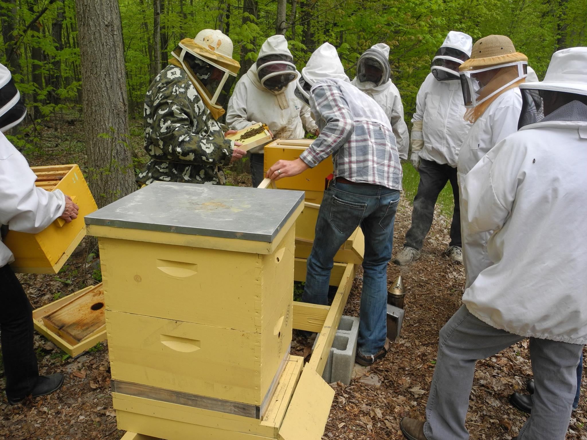 beekeeping workshops archives addison county beekeepers